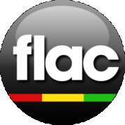 FlacMusic com – A High-Resolution Music File Format
